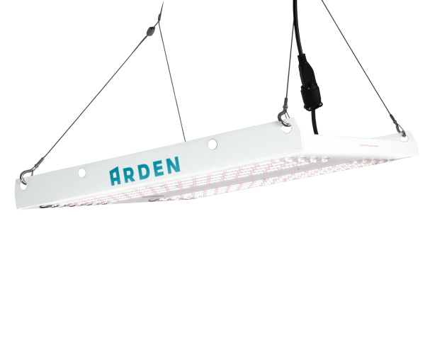 Cannabis grow light by Arden Lighting
